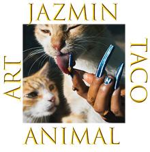 Jazmin Taco Art